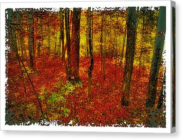 Autumn Carpet Canvas Print by David Patterson