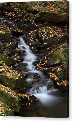 Autumn Cascade At Chesterfield Gorge - New Hampshire Canvas Print by Juergen Roth