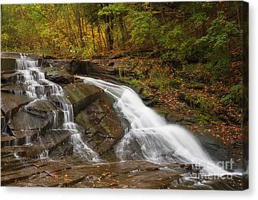 Autumn Cascade Canvas Print by Michele Steffey