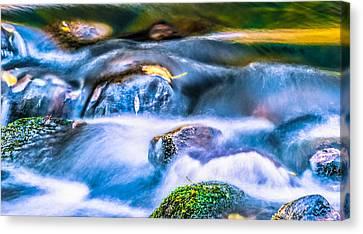 Autumn Cascades Canvas Print