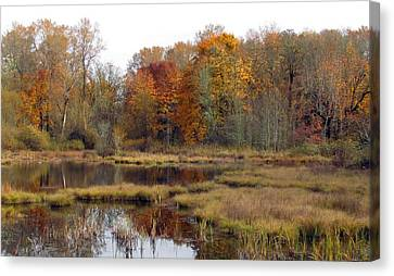 Autumn Changes  Canvas Print by I'ina Van Lawick