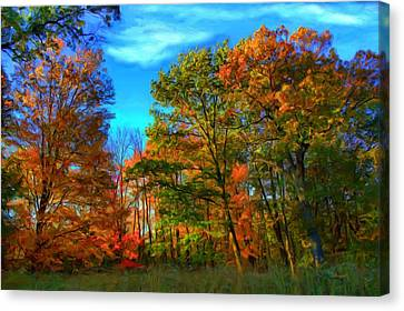 Autumn Clearing Canvas Print by Dennis Lundell