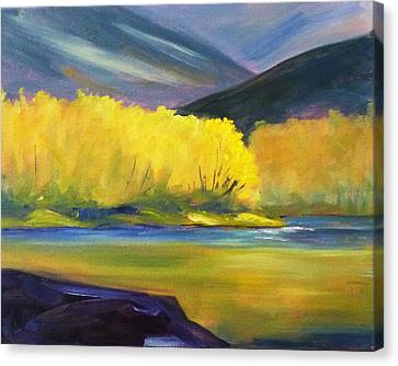 Autumn Color Canvas Print by Nancy Merkle