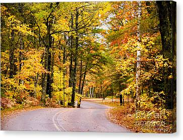 Canvas Print featuring the photograph Autumn Colors - Colorful Fall Leaves Wisconsin - II by David Perry Lawrence
