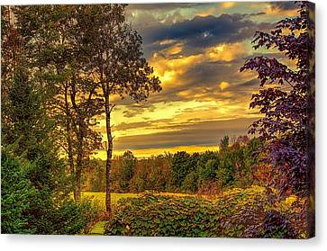 Autumn Colors Canvas Print by Fred Larson