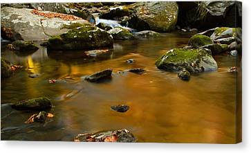 Autumn Colors On Little River Canvas Print by Dan Sproul