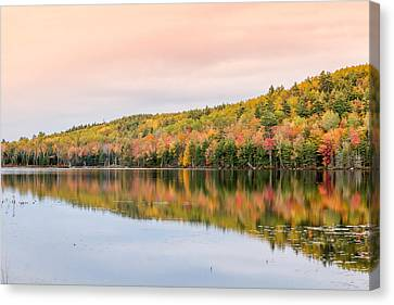 Canvas Print featuring the photograph Autumn Colors  by Trace Kittrell