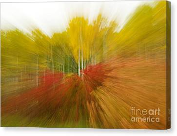 Autumn Colors Canvas Print by Vivian Christopher