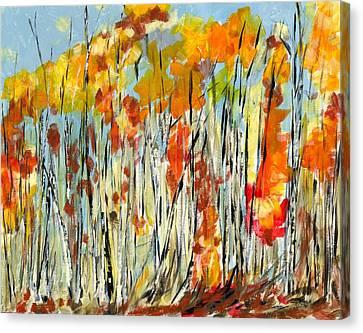 Autumn Colours Canvas Print by David Dossett