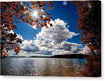 Canvas Print featuring the photograph Autumn  Confidential  by Bob Orsillo