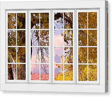 Autumn Cottonwood Tree Longs Peak White Window View Canvas Print