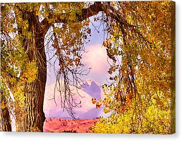 Autumn Cottonwood Twin Peaks View Canvas Print by James BO  Insogna