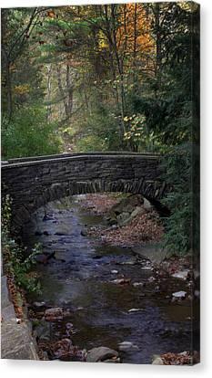 Autumn Creek Canvas Print by J Allen