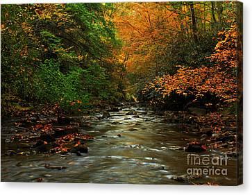 Autumn Creek Canvas Print by Melissa Petrey