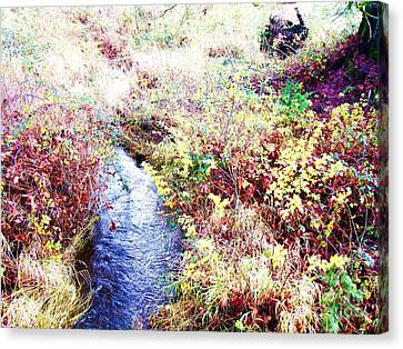 Canvas Print featuring the photograph Autumn Creek by Vanessa Palomino