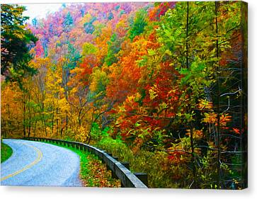 Autumn Curve Canvas Print by  Vince Maggio