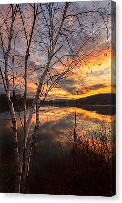 Autumn Dawn Canvas Print by Bill Wakeley