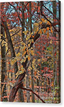 Autumn Day Canvas Print by Jeff Breiman