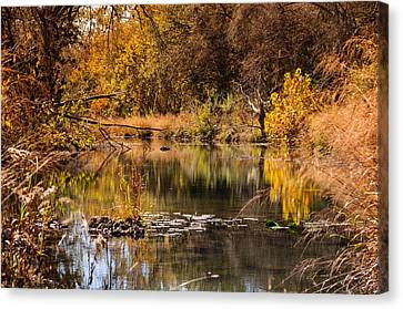 Autumn Day Canvas Print by John Johnson