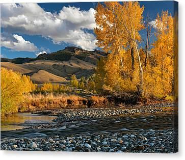 Autumn Day Canvas Print by Leland D Howard