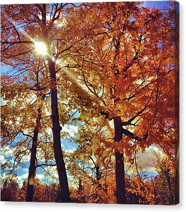 Beautiful Autumn Day Canvas Print - Autumn Days by Dan Sproul