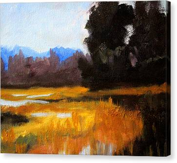 Wa Canvas Print - Autumn Delta by Nancy Merkle