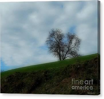 Autumn Etude Canvas Print