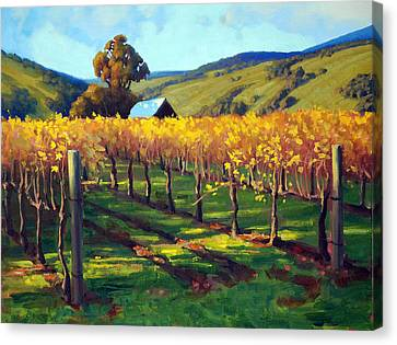 Autumn Evening Napa Canvas Print