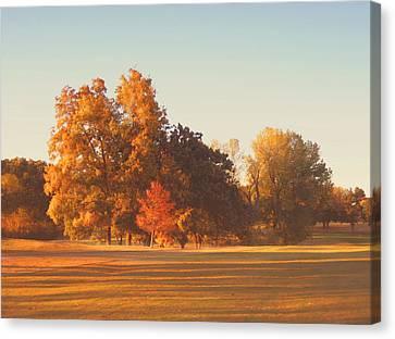 Autumn Evening On The Golf Course Canvas Print by Ann Powell