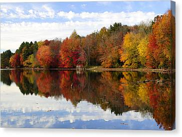 Autumn Explosion Canvas Print by Luke Moore