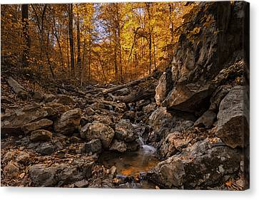 Autumn Falls Canvas Print