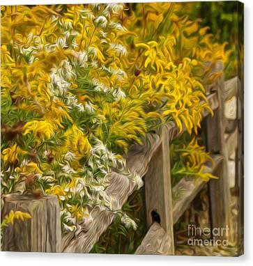 Autumn Fence Canvas Print by Brian Mollenkopf
