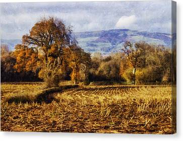 Autumn Fields Canvas Print by Ian Mitchell