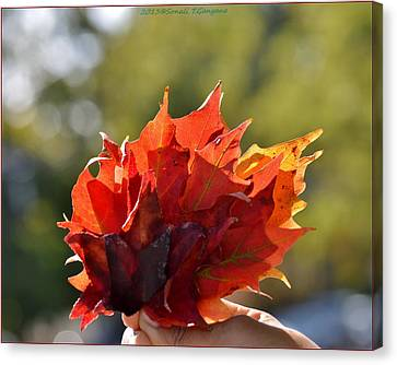 Autumn Flower Canvas Print by Sonali Gangane