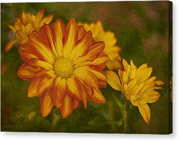 Autumn Flowers Canvas Print by Ivelina G