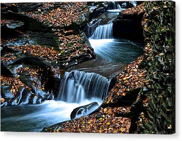 Autumn Flows Forth Canvas Print by Frozen in Time Fine Art Photography