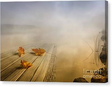 Autumn Fog Canvas Print by Veikko Suikkanen