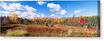 Autumn Foliage, New York State, Usa Canvas Print by Panoramic Images