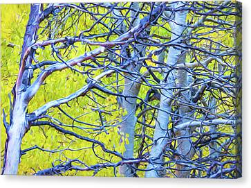 Autumn Foliage On Trees In Sierra Canvas Print by Marion Owen