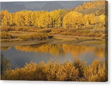 Autumn Foliage Surrounds A Pool In The Canvas Print by David Ponton