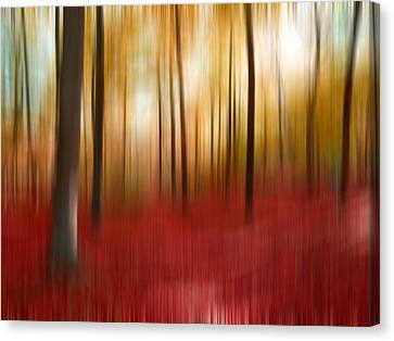 Autumn Forest Canvas Print by Angela Bruno