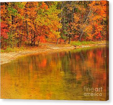 Autumn Forest Reflection Canvas Print by Terri Gostola