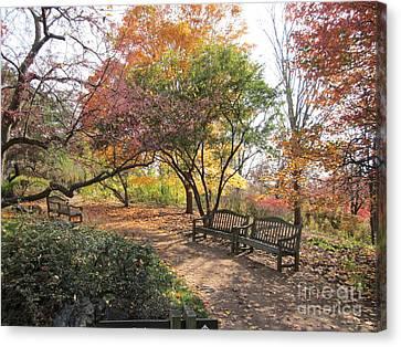Autumn Garden Canvas Print by Kathie Chicoine