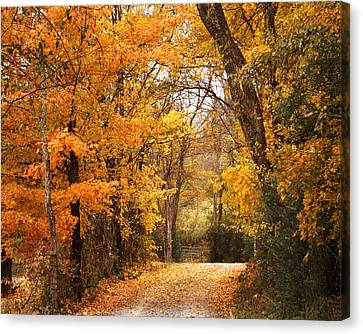 Autumn Gate Canvas Print by TnBackroadsPhotos