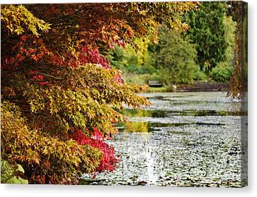 Canvas Print featuring the photograph Autumn Glory By The Pond by Maria Janicki
