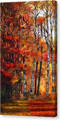 Dale Jackson Canvas Print - Autumn Glory I by Dale Jackson