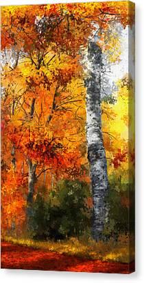 Dale Jackson Canvas Print - Autumn Glory II by Dale Jackson