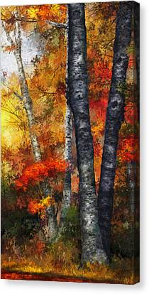 Dale Jackson Canvas Print - Autumn Glory IIi by Dale Jackson