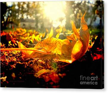 Autumn Glory Canvas Print by Janine Riley