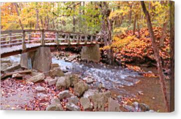 Autumn Glory Canvas Print by Kay Novy